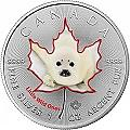 1 oz Silber Maple Leaf coloriert 2016 Kanada farbig Tierbabys Robbe