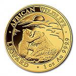 1 Oz Goldmünze Somalia African Wildlife Leopard 2019